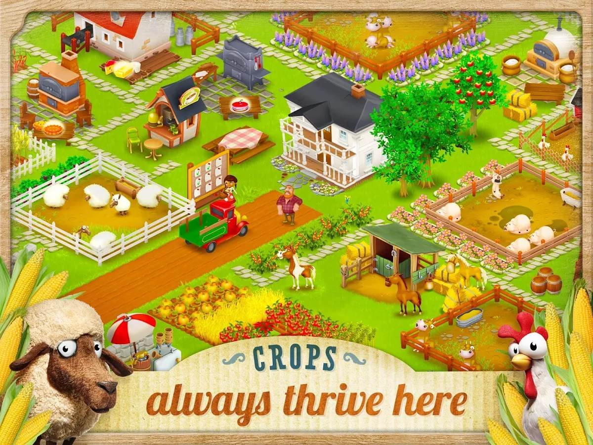 free hay day download