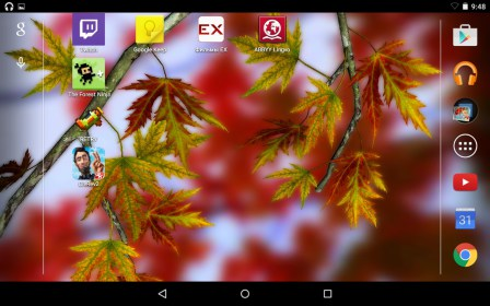 Autumn Leaves in HD Gyro 3D do Fly Flylife Connect 7.85